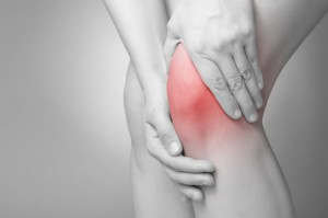 Blutegeltherapie bei Arthrose