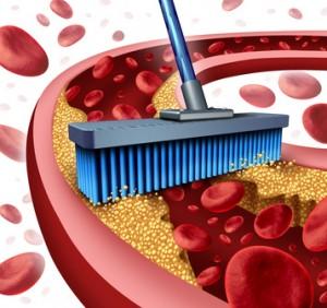 Blutegeltherapie als Ausleitungsverfahren